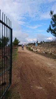 road into farm